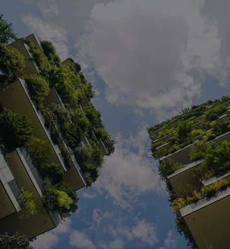 IL BOSCO New Capital city