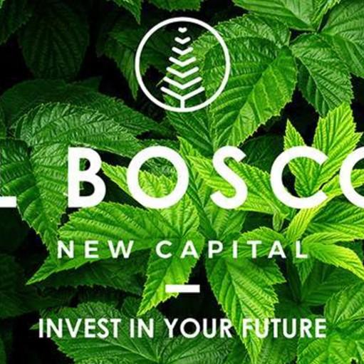 IL BOSCO New Capital
